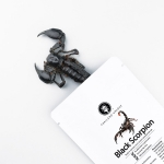 SCORPION ASIAN FOREST DEHYDRATED