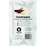 GRASSHOPPERS CHOCOLATE COATED