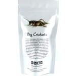 CRICKET LARGE DEHYDRATED