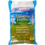 RICE JASMINE MILAGROS FARMS