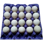 DUCK EGGS FEI FEI BRAND